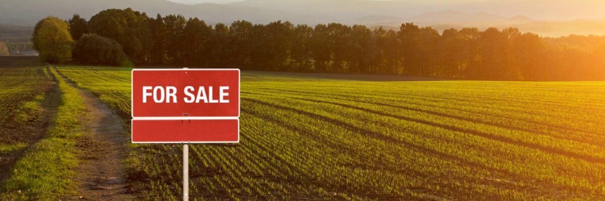3 Things To Consider Before Buying A Plot Of Land To Build On